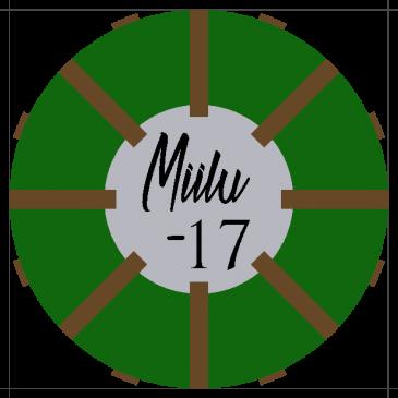 Lippukuntaleiri Miilu -17